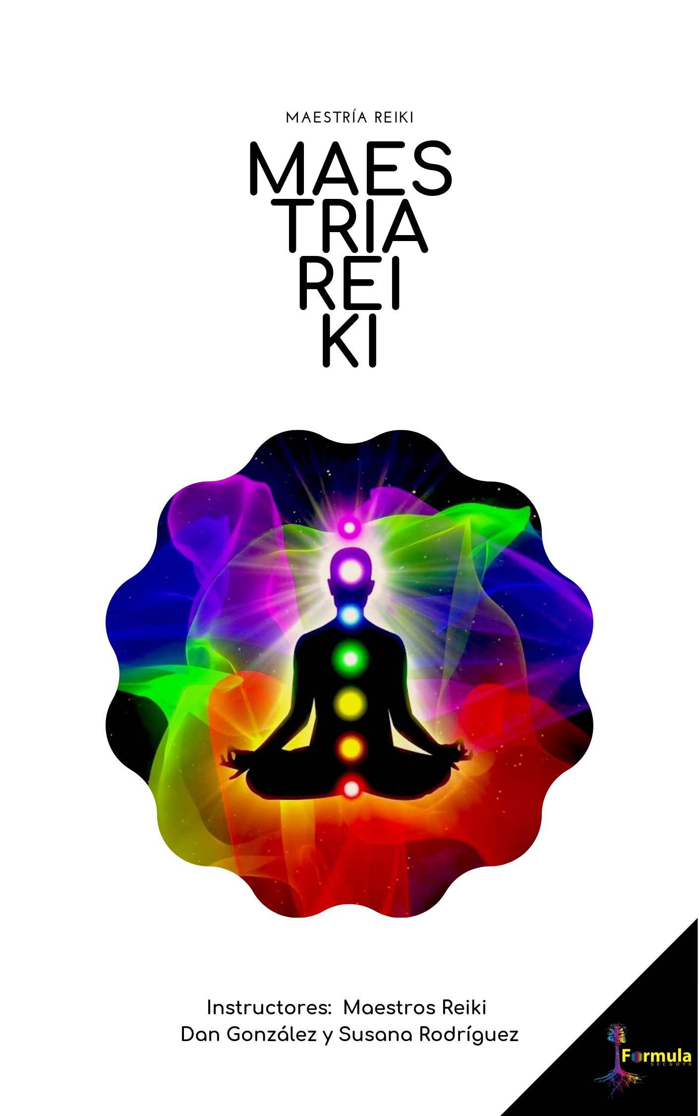 MAESTRIA REIKI MANUAL