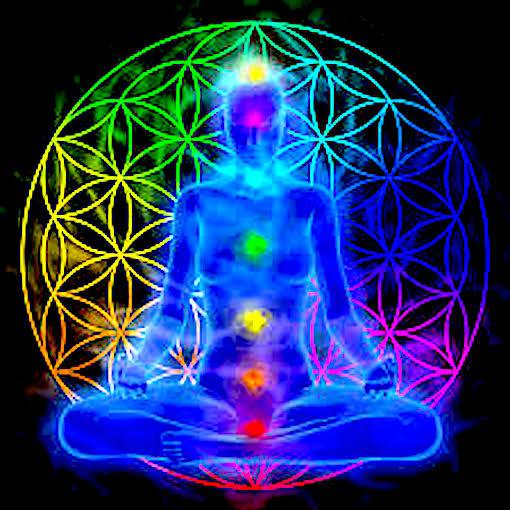 flor de la vida meditación